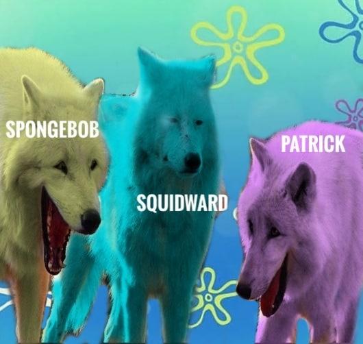Spongebob, SpongeBob Edition, Laughing Spongebob Memes Spongebob, SpongeBob Edition, Laughing text: SPONGEBOB M PATRICK SQUIDWARD