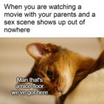 other memes Dank, Visit, Feedback, WgXcQ, TV, Qw4 text: When you are watching a movie with your parents and a sex scene shows up out of nowhere Man that
