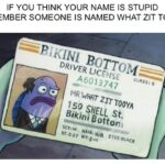 Spongebob Memes Spongebob, Mr, Spongebob, Zit Tooya, DOB, Patrick text: IF YOU THINK YOUR NAME IS STUPID REMEMBER SOMEONE IS NAMED WHAT ZIT TOOYA DRIVER • 6013747 ccnss: s Iso SHELL st. HAIR: imgfiipcom  Spongebob, Mr, Spongebob, Zit Tooya, DOB, Patrick