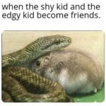 Wholesome Memes Wholesome memes,  text: when the shy kid and the edgy kid become friends.  Wholesome memes,
