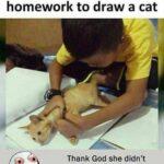 cringe memes Cringe,  text: Teacher gave him homework to draw a cat Thank God she didn