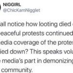 Black Twitter Memes Tweets, CNN, POC, BLM, VOTE, No text: NIGGIRL @ChicKamNigglet Did y