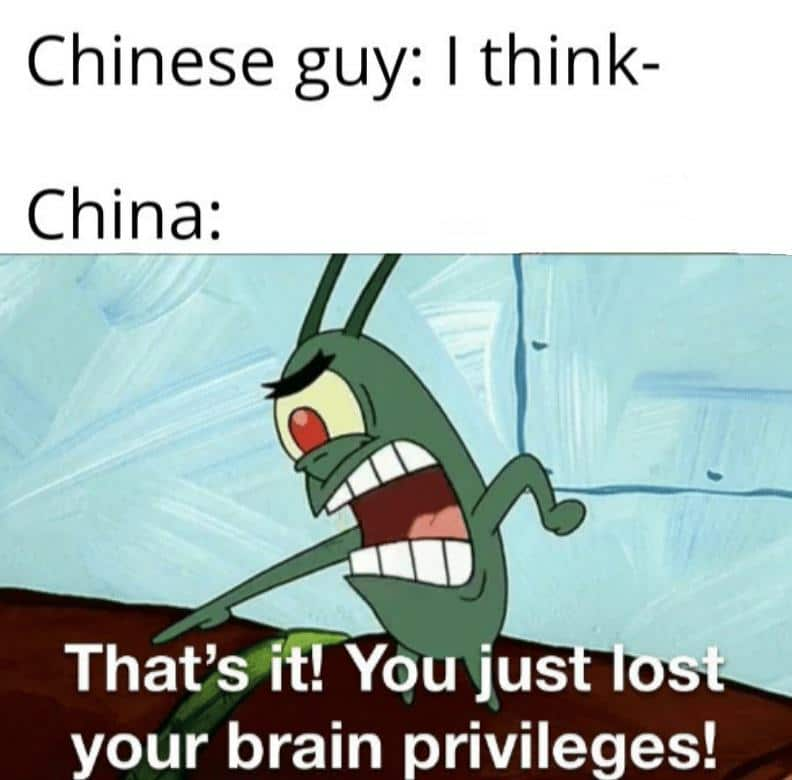 Spongebob, CCP Spongebob Memes Spongebob, CCP text: Chinese guy: I think- China: That's-itYYou jus your brain privileges!