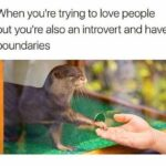Wholesome Memes Wholesome memes, IRL text: When you