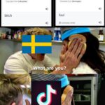 other memes Funny, Swedish, Sweden, Lithuanian, Took, Tolkien text: Swedish tik Translate from: Lithuanian bitch English A bitch Swedish tok Translate from: Norwegian fool @ Community verified English  Funny, Swedish, Sweden, Lithuanian, Took, Tolkien