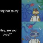 "Spongebob Memes Spongebob, Texas, SpongeBob, Making text: Trying not to cry ""Hey, are you  Spongebob, Texas, SpongeBob, Making"