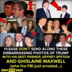 Political Memes Political, Biden, Epstein, Trump, Jeffrey, Ivanka text: PLEASE DON