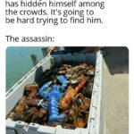 other memes Funny, Assassin, Stand, Creed, Test, Altair text: Templar guard: The assassin has hidden himself among the crowds. It