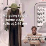 other memes Funny, Tall Yoda, No, Kenobi, Wide Kenobi, Obi-Wan text: e going to et some piz a IIÅ at 2.48 båm My dog fo owing thinking he