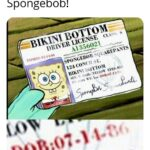 Spongebob Memes Spongebob, Happy text: birthday —BIKINI BOTTOM— DRIVER LICENSE s A1336021 SPONGEBOB SQUAREPANTS 124 31
