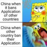 Dank Memes Dank, Chinese, China, India, America, TikTok text: China when it bans Application of other countries China when other country ban their Application  Dank, Chinese, China, India, America, TikTok