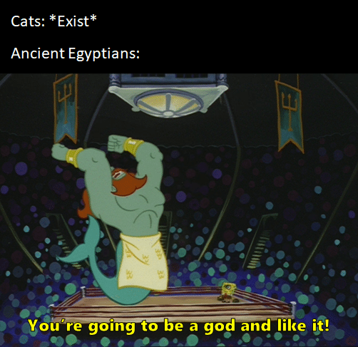 Spongebob, SpongeBob, Neptunes Spatula, Making Spongebob Memes Spongebob, SpongeBob, Neptunes Spatula, Making text: Cats: *Exist* Ancient Egyptians: to be a gog and like i,t!